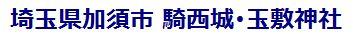 埼玉県加須市 騎西城・玉敷神社
